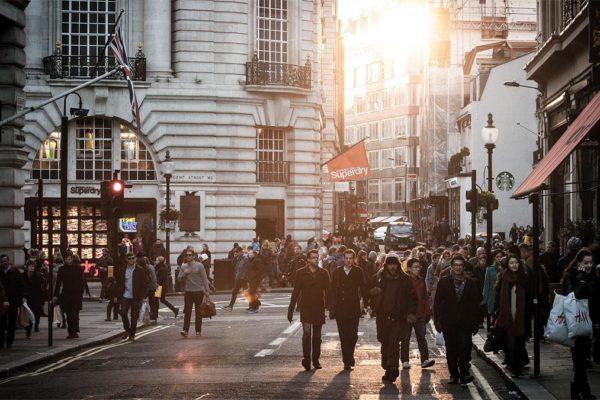 Overpopulation Concerns